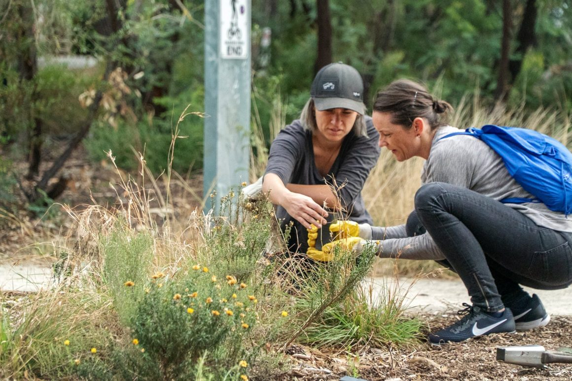 Reinvigorating the green surrounds of an iconic Melbourne creek