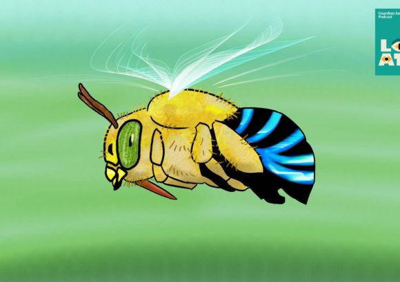 Amazing adaptations: are bigger bee tongues better?