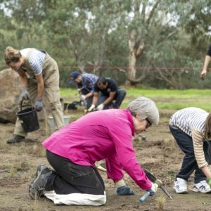 Banyule Community Conservationists