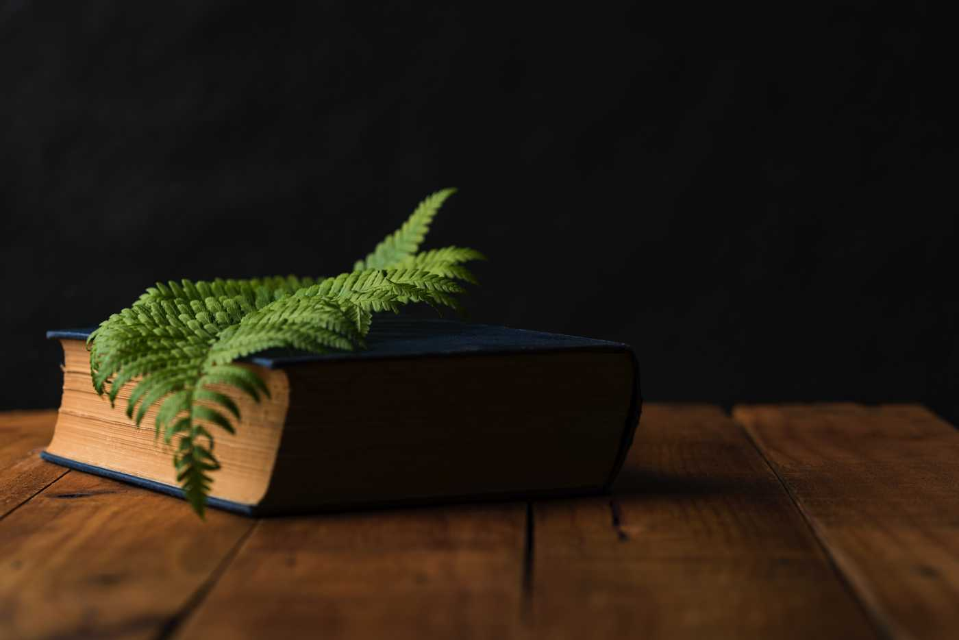 Reading wonder: the power of nature in Australian children's classics