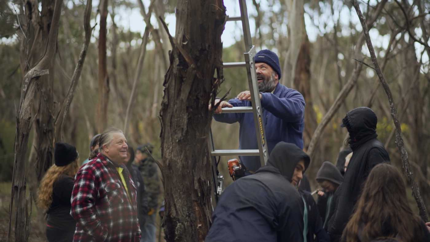 Friends of Brisbane Ranges: Empowering Students and Saving Phascogales