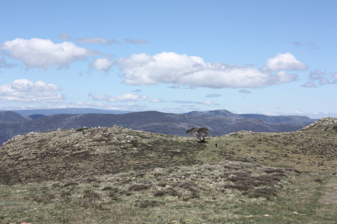 Mount Buller to Mount Stirling