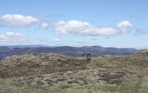 Mount Buller to Mount Stirling