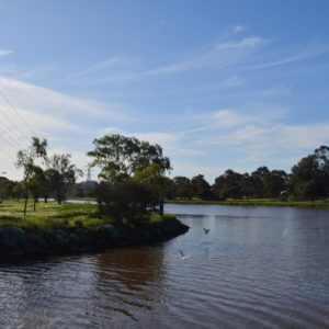 Maribyrnong, lifeblood of the west