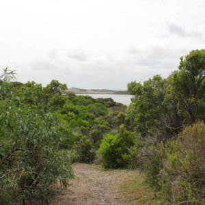 Livingstone Island Nature Walk