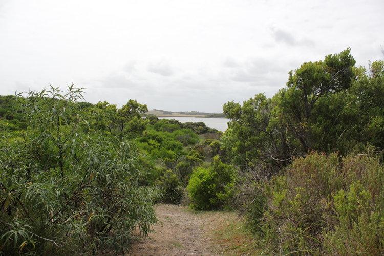 Livingstone Island Nature Walk