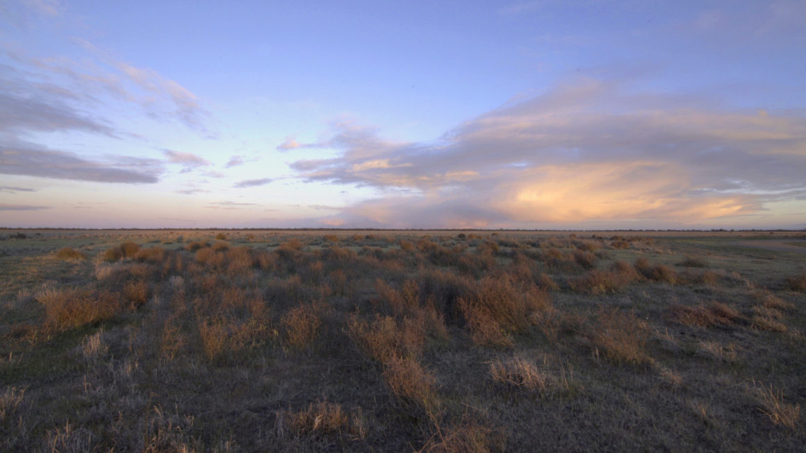 Plains-wanderer: A Feature Film