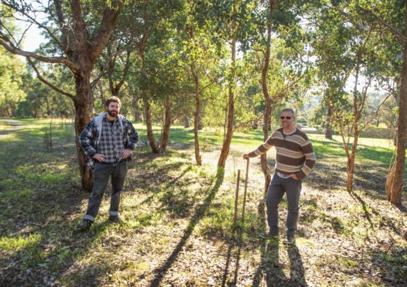 The biodiversity secrets of Anthony Beale Reserve