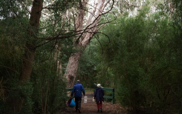A bushland oasis in Melbourne's north-east