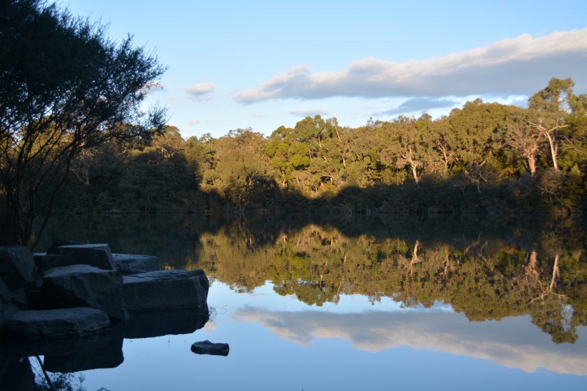 Blackburn's bushland hideout