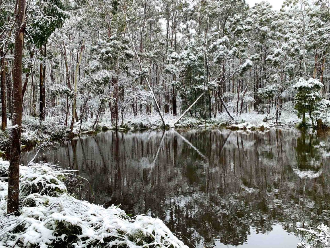 Winter is a wonderland in the Macedon Ranges