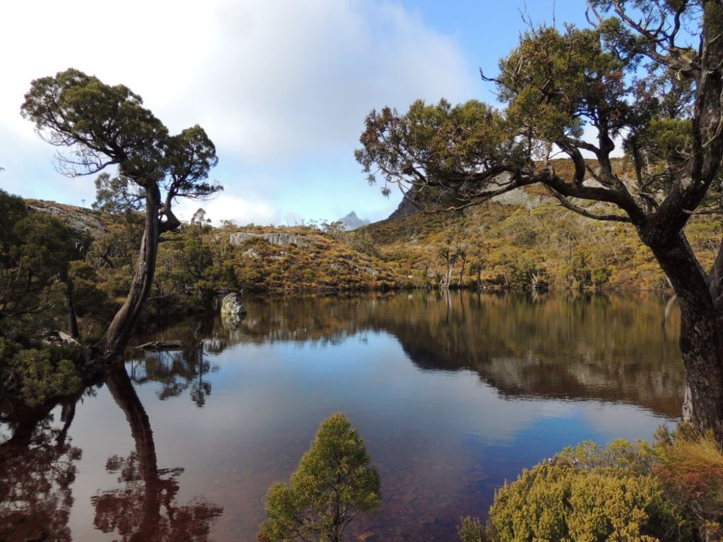 One of the many small ponds along the walk. Image: Christopher Dixon.
