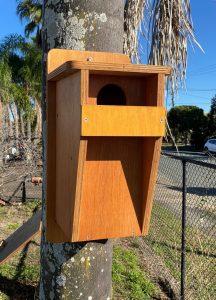 Nest box for a Crimson Rosella