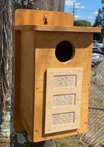 Nest box for a Ringtail Possum