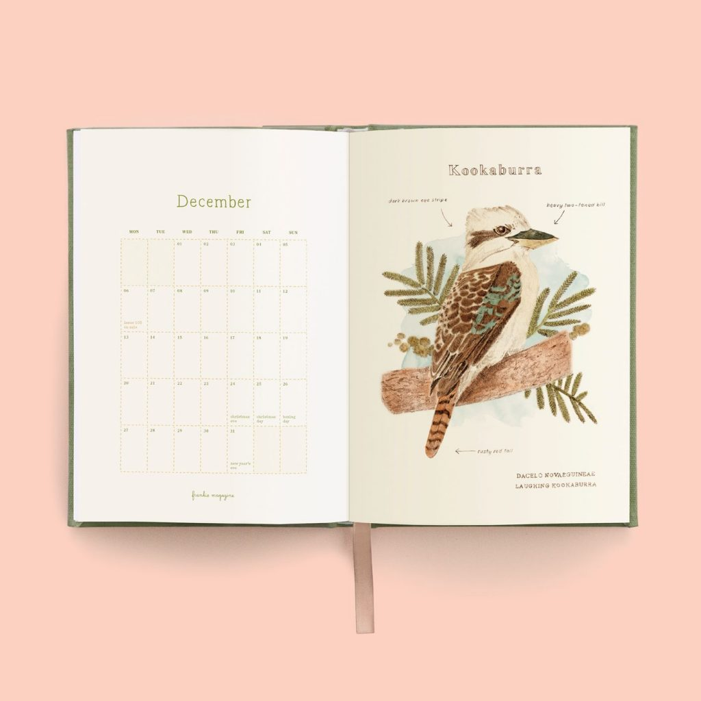 The diary contains helpful tips on bird identification including feather types, beak shapes and journaling tips. Image courtesy of frankie magazine.