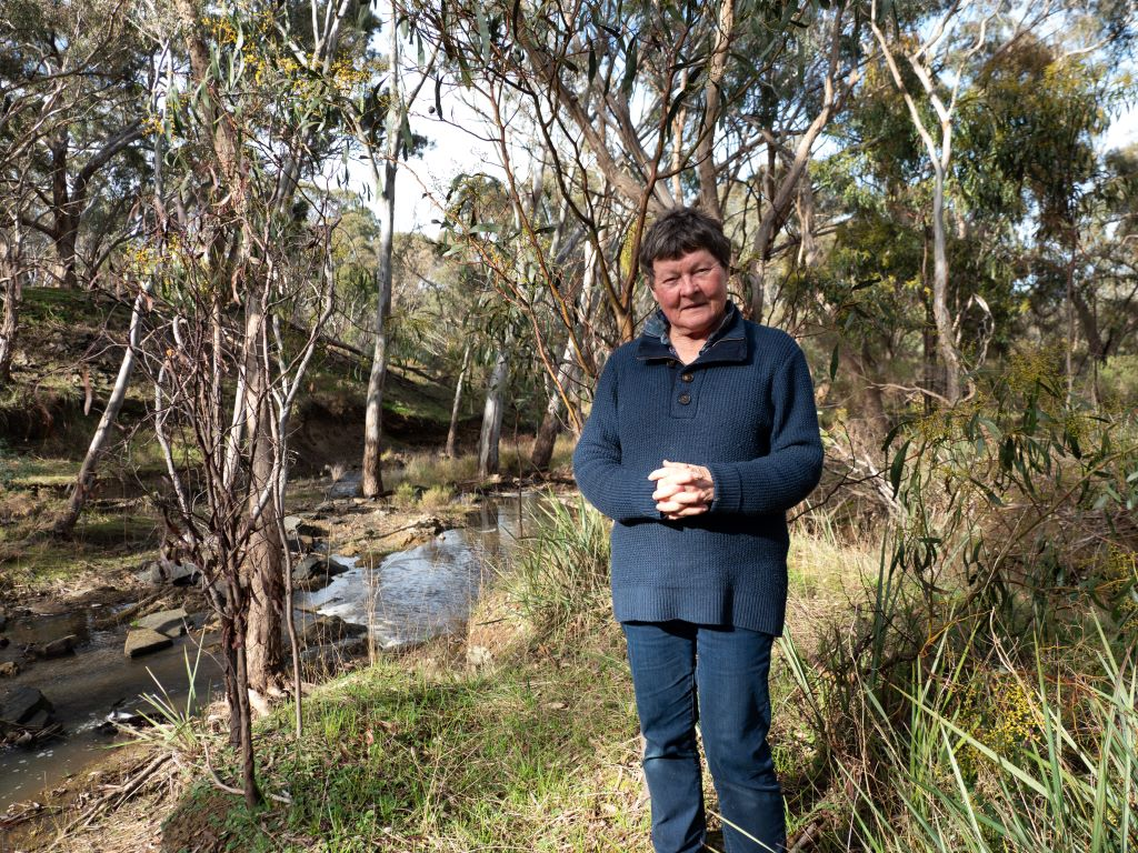 This photo of Marie was taken at Forest Creek downstream from Expedition Pass Reservoir spillway near Castlemaine. Image courtesy of John Ellis.
