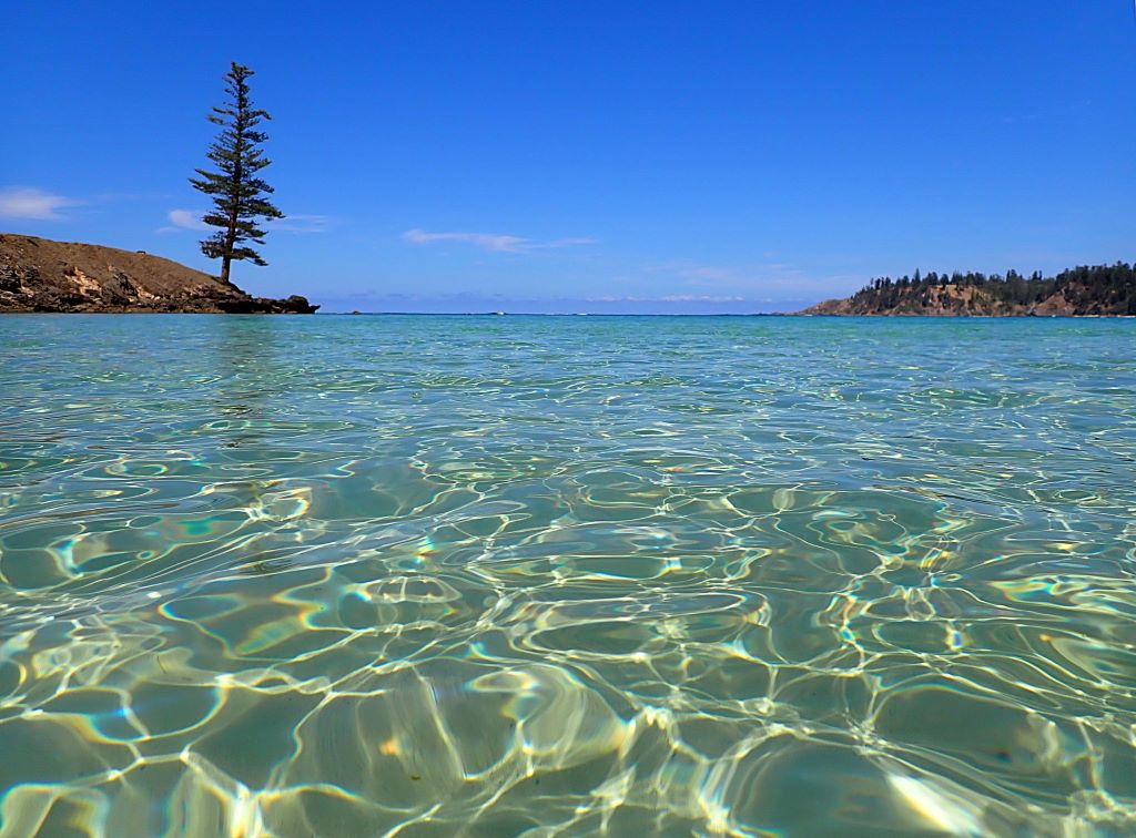 Playing the long game: Norfolk Island's coral reef and lagoons