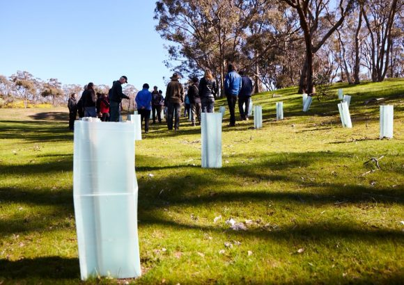 Conservation starts with community: Connecting Country and land restoration in Central Victoria