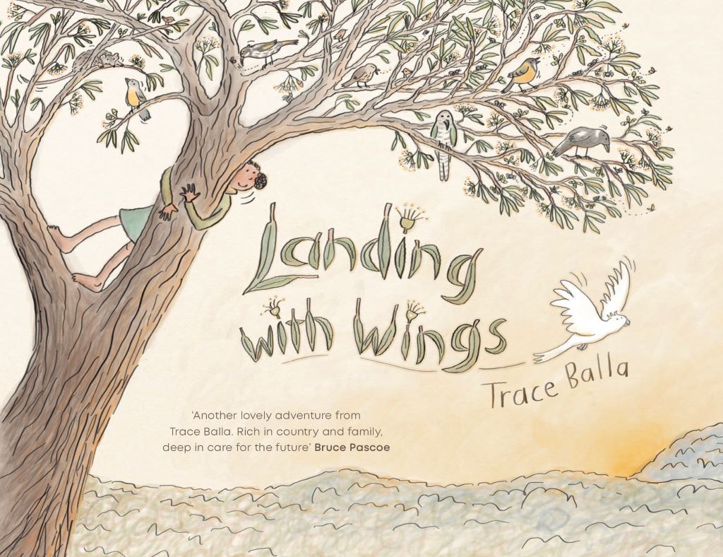 The cover of Landing with Wings. Image courtesy of Trace Balla.