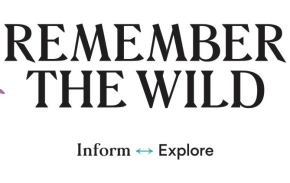Word from the Wild – September 2021
