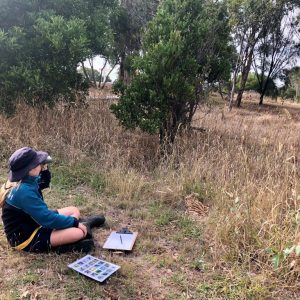 Cornish College Nesting Box Project: Environmental education in the era of remote learning